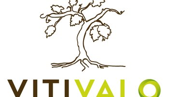 Md logo vitivalo final